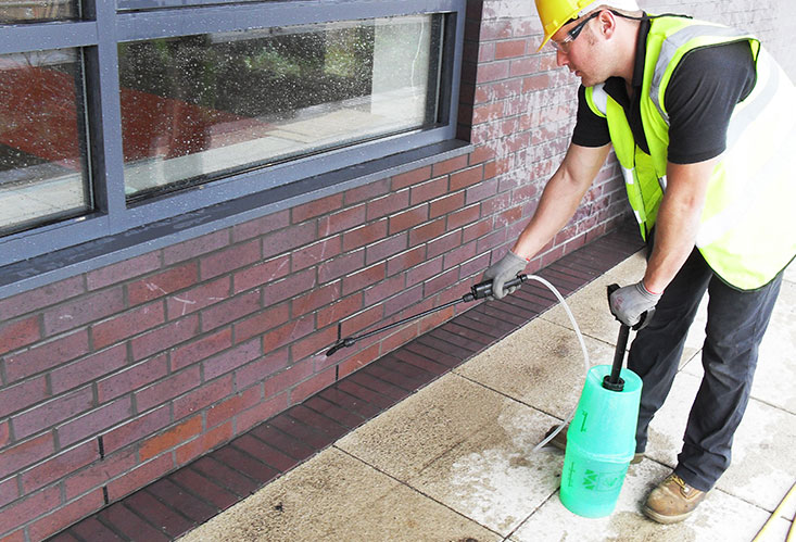 Steam Cleaning And Brick Pointing